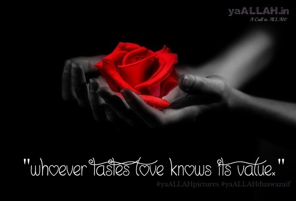 love-quotes-islam-#yaALLAHpictures